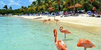 Aruba anuncia a reabertura das fronteiras para a América Latina